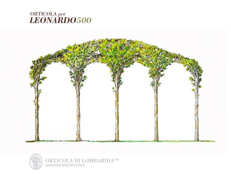 Amazingstudio Leonardo 0000 3