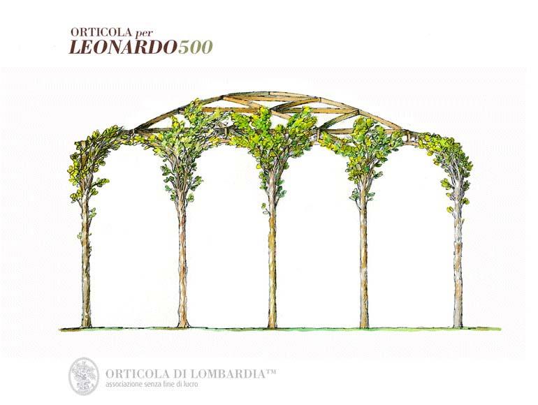 Amazingstudio Leonardo 0001 2