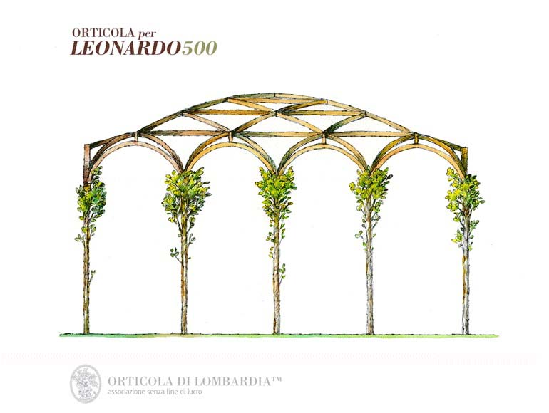 Amazingstudio Leonardo 0002 1